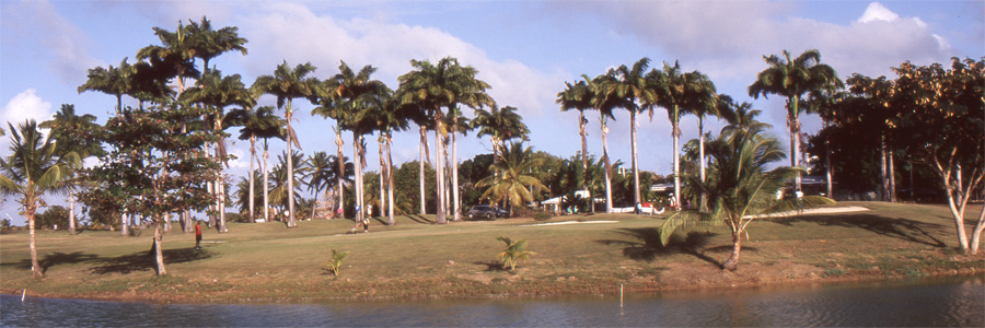 060golfguadalupe2263